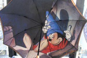 日本製1枚プリントの2重張り雨傘